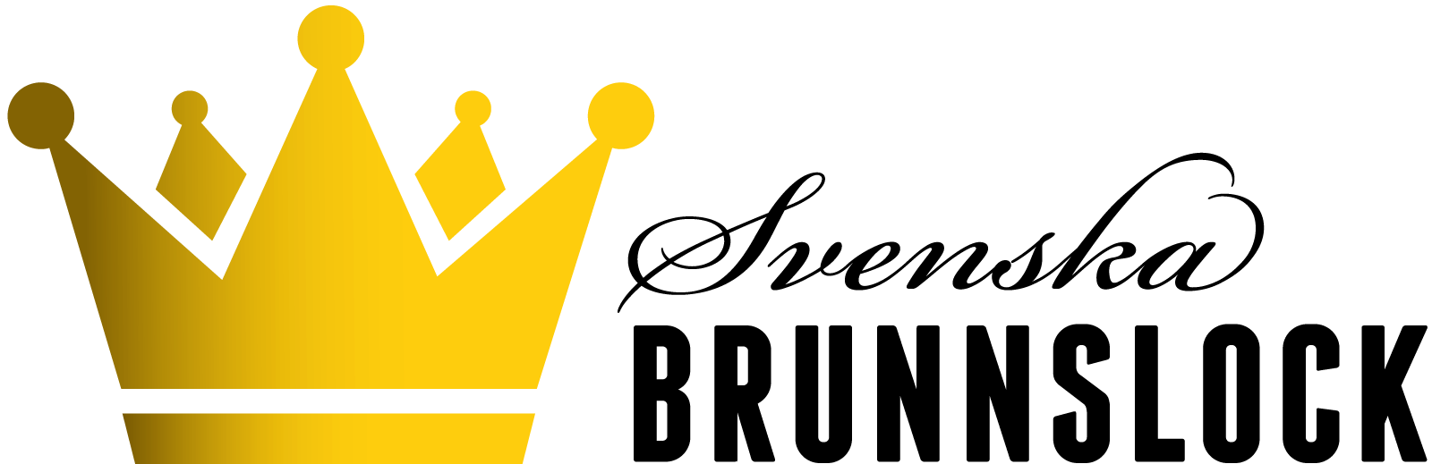 Svenska Brunnslock logo